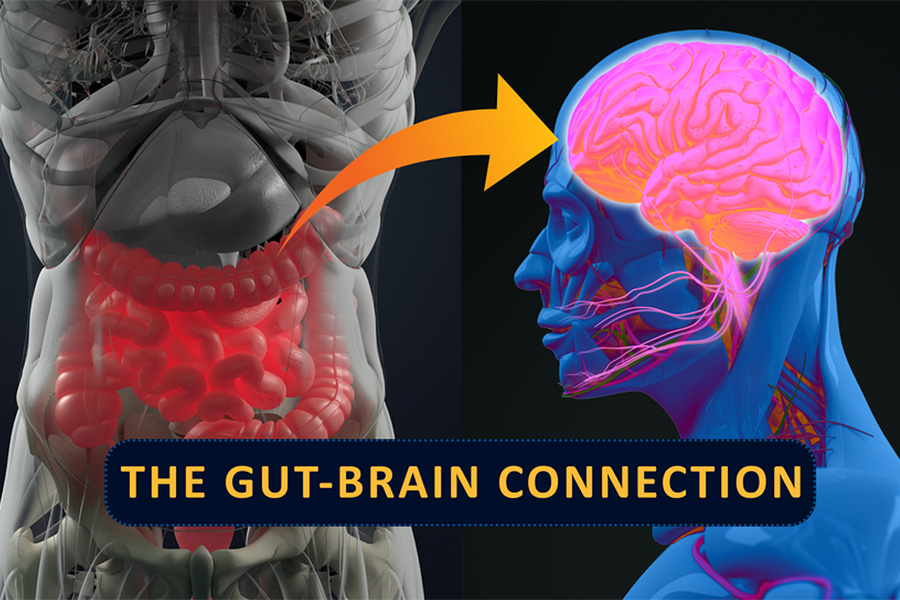 Do Probiotics Work Really For Reversing Alzheimer, Depression And Weight Loss